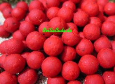 Nashbait Instant Action Squid & Krill