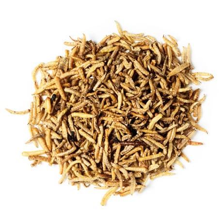 Pallatrax Dried Naturals Maggot