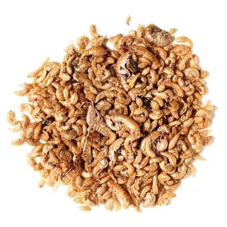 Pallatrax Dried Naturals Gammarus Shrimp