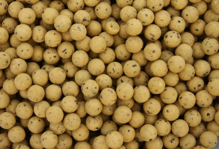 Nutrabaits Blue Oyster Boilies 15mm, 5kg