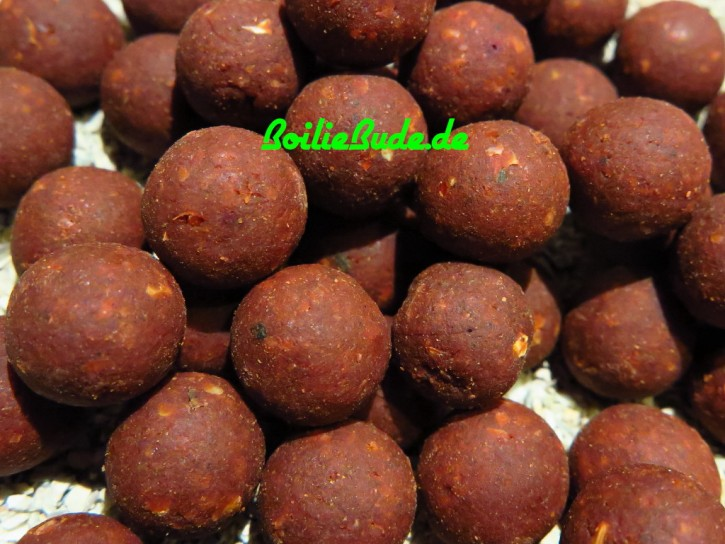 West Country Baits Cream Marine Boilies 16mm, 2,5kg