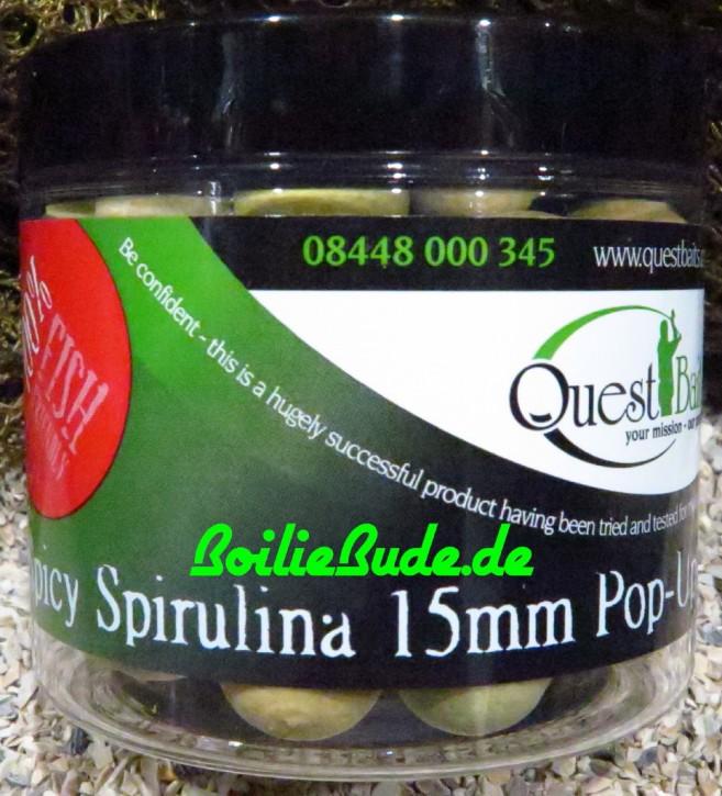 Quest Baits Spicy Spirulina Pop Up´s 15mm