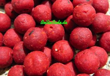 Sandhurst Baits Red Illex Boilie 20mm 5kg